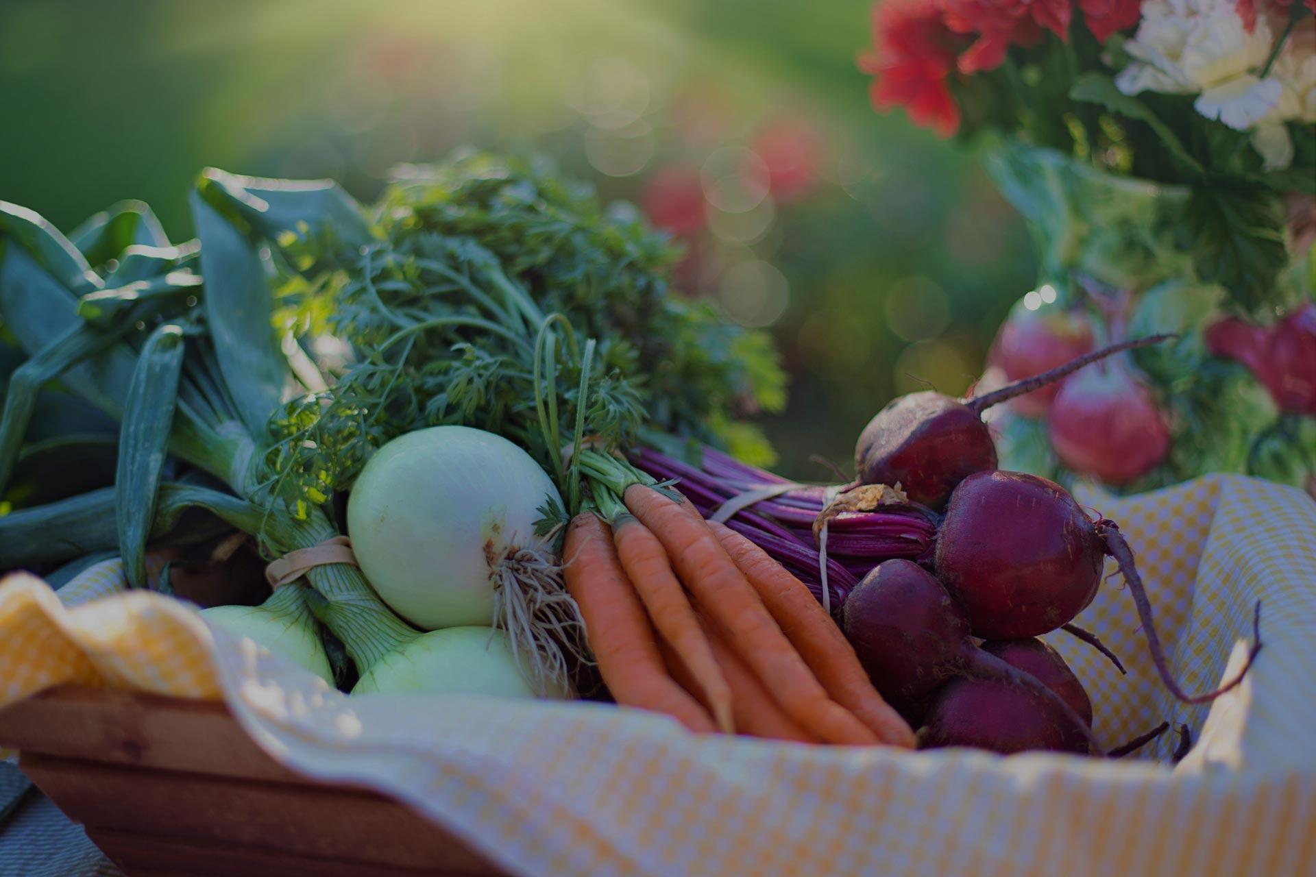 Organic Gardening in Powell River